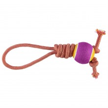RB Rope Toy w Ball 81