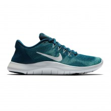 Nike Flex 2018 Run Ladies Running Shoes