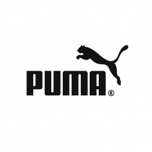 Puma Future 2.4 Childrens Astro Turf Trainers